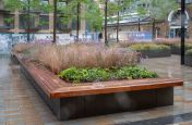 Planters with timber benching