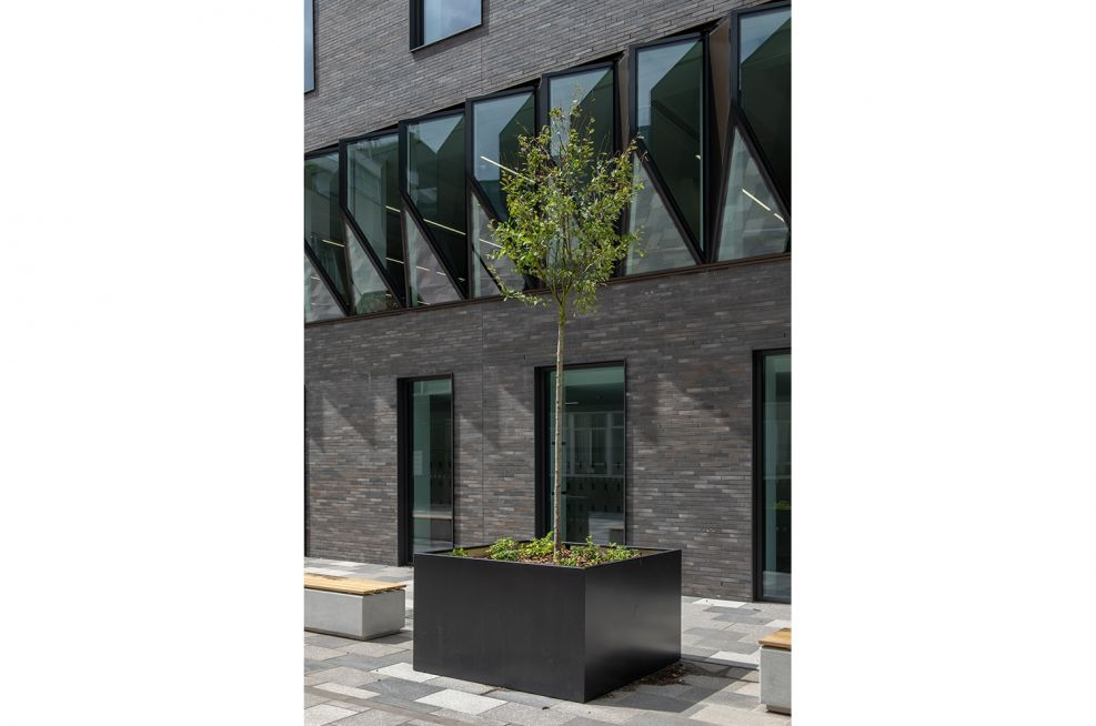 Modern steel planters for trees