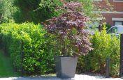 Taper 800 Granite Weatherproof Planters
