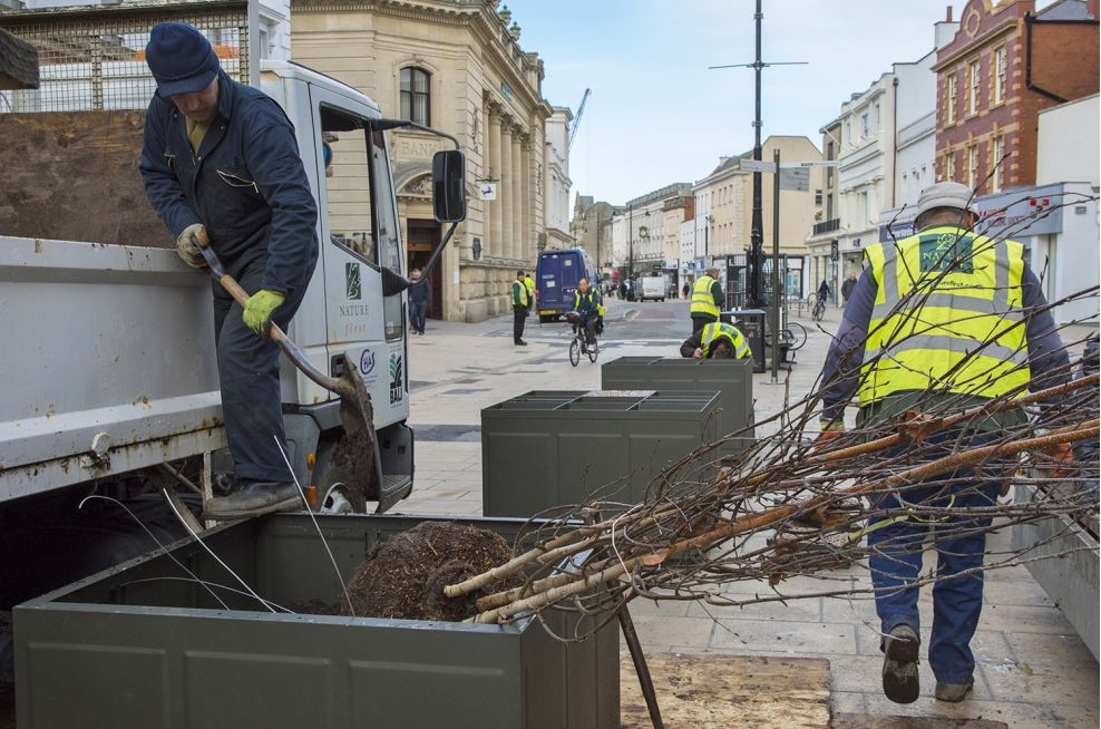 Steel Bespoke Tree Planters In Cheltenham High Street