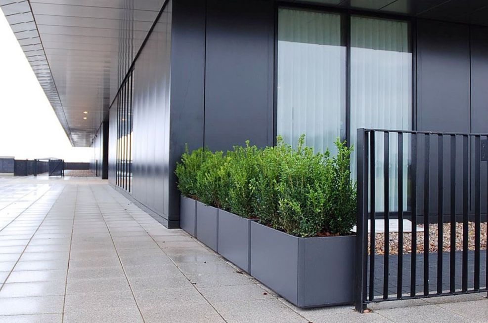 Planters Used At The Entrance