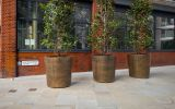 bronze planters for public and commercial spaces