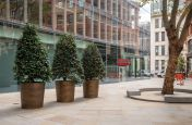 Bespoke bronze planter pots