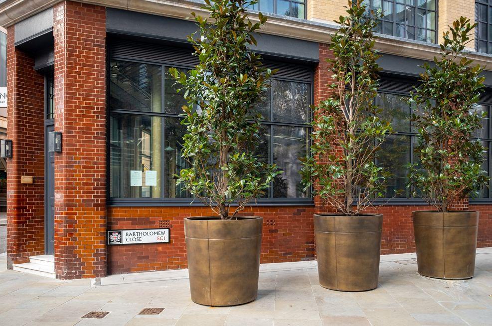 Extra large bronze clad planters