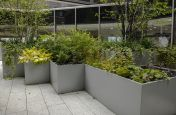 Steel planters for educational buildings