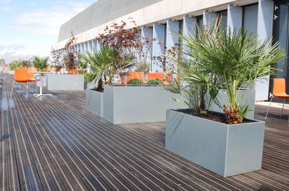 City Of Westminster College Galvianised Steel Planters
