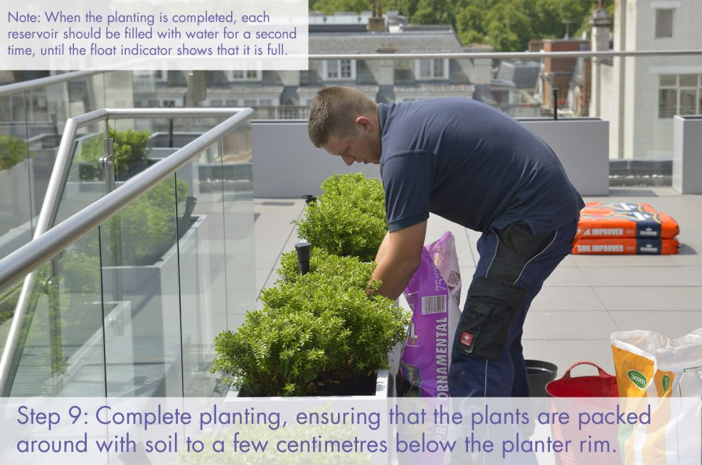 Complete planting and top planters with soil