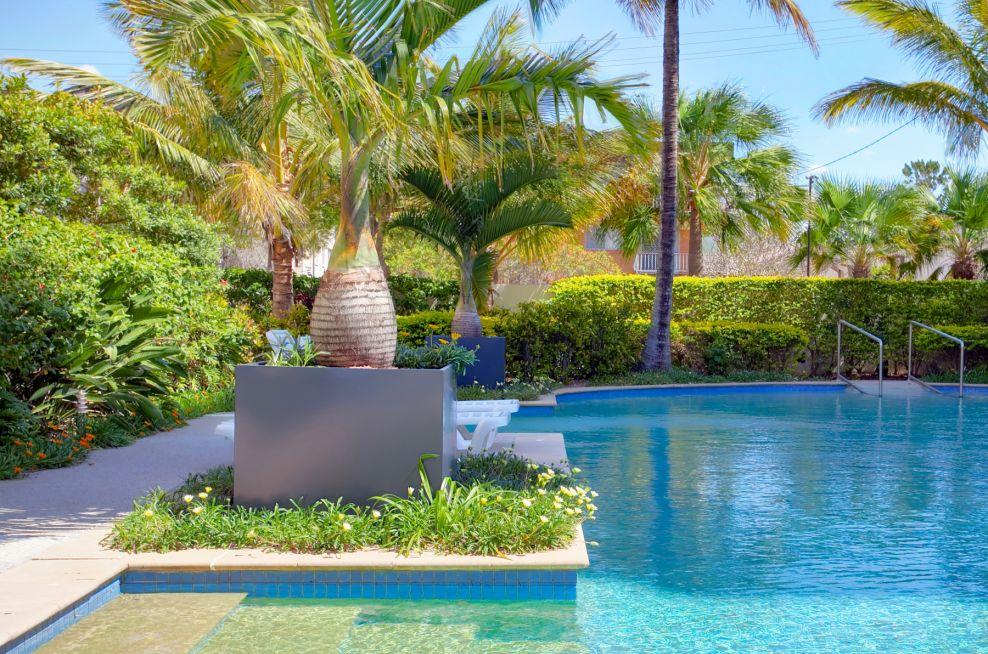 FibreGlass Planters For Bottle Palms