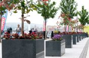 Lare Granite Trough and Cube Planters on The Quayside