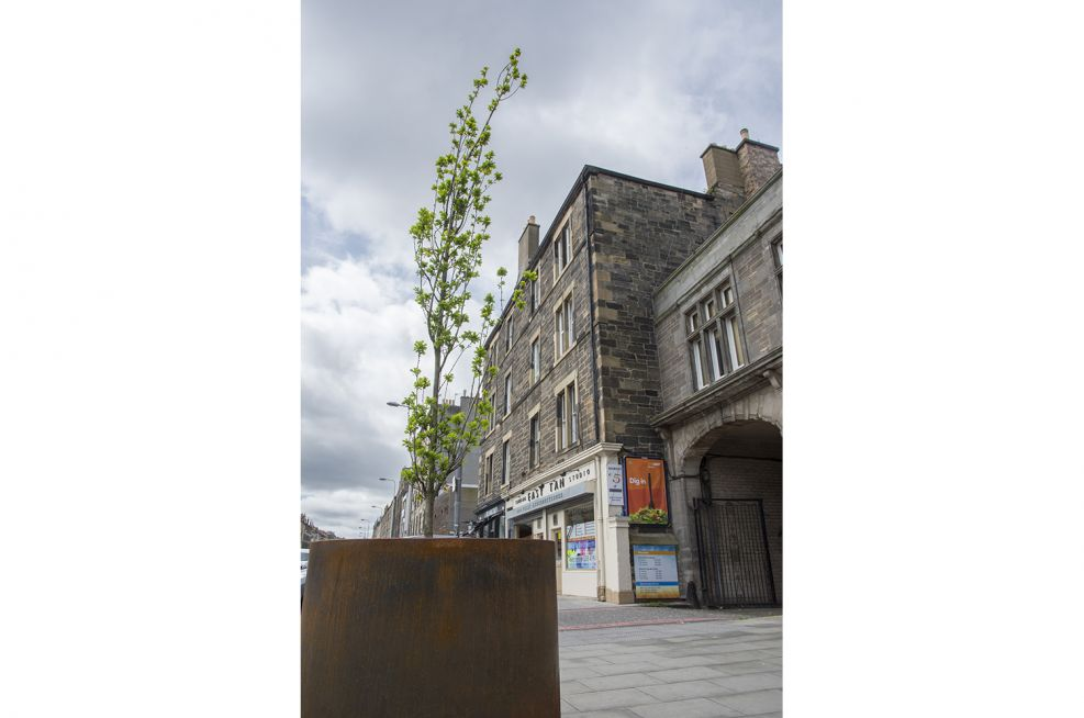 Steel Planters Made From Corten Steel