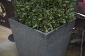 Granite Stone Planters At Fremlin Walk shopping centre, Maidstone