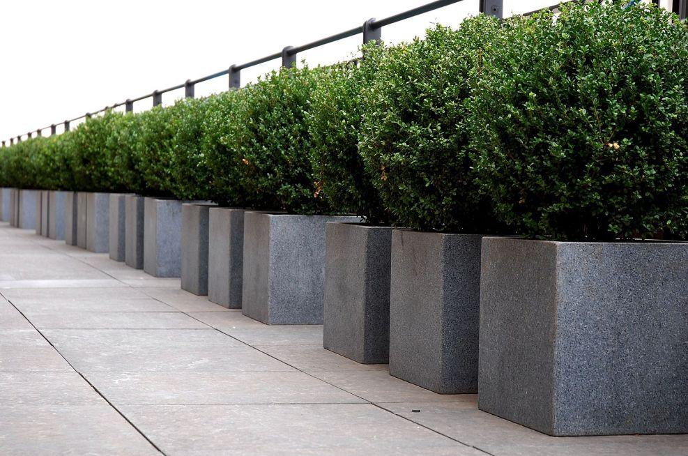 Honed Granite Cube Planters