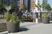 High Performance Fibre Glass Boulevard Planters