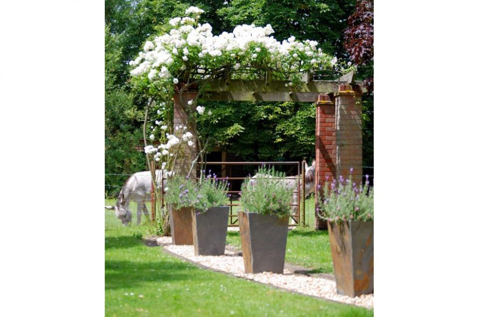 Tall Taper Planters Featuring Planted Lavender