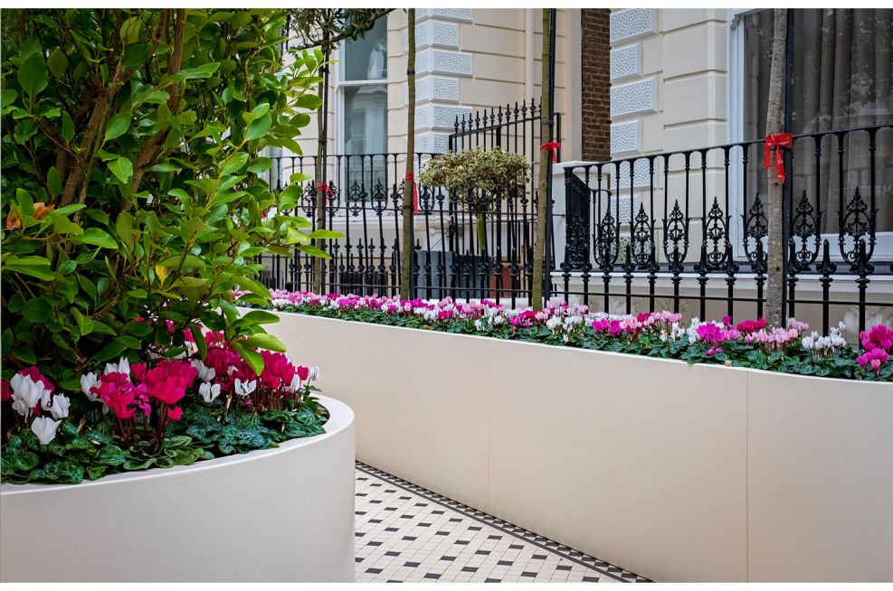 Custom design trough planters