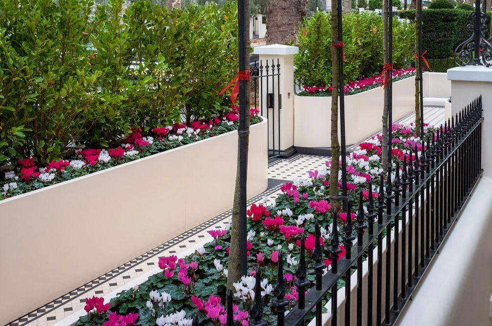 custom magnolia planter troughs