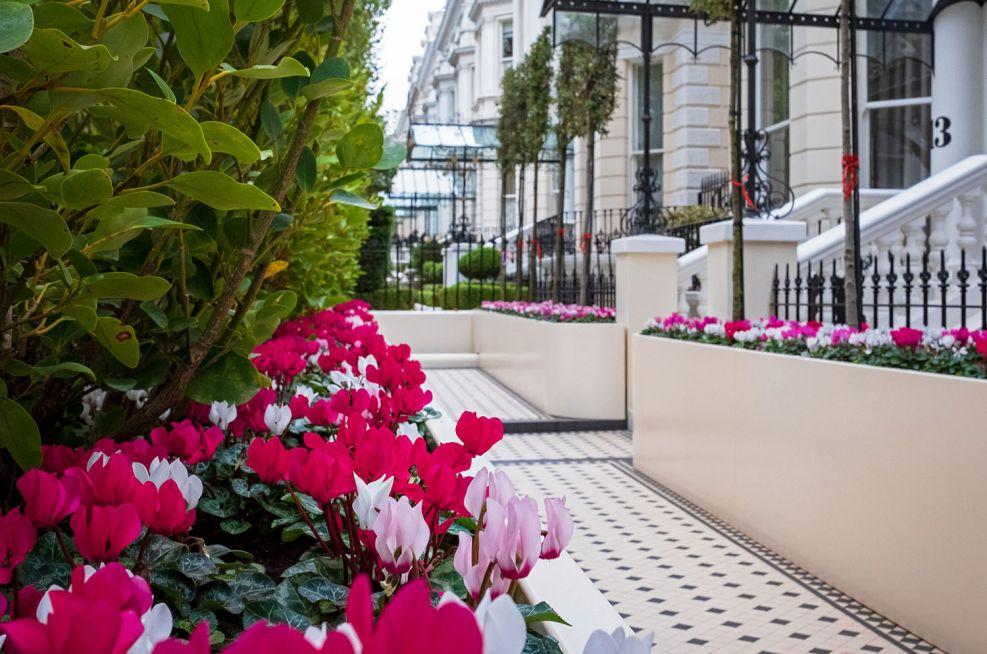 Decorative privacy screen planters