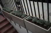 Hotel Planters Featuring IOTAS Fresco Range