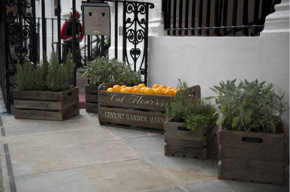 Italian Style Planters For Hotel In London