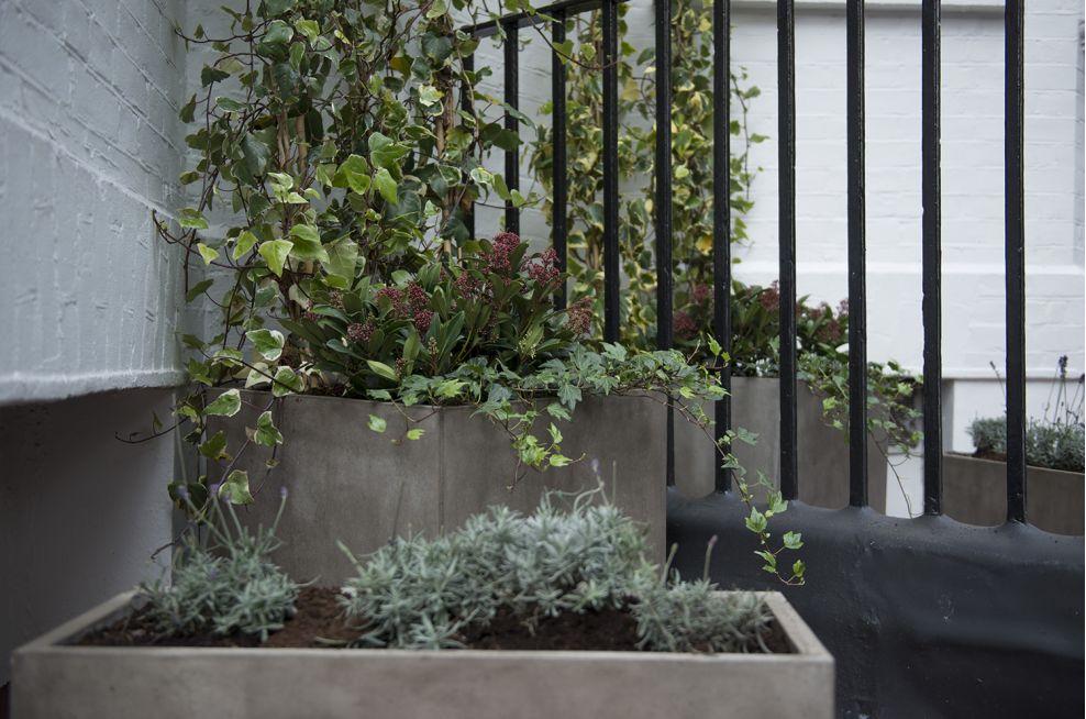Rectangular Fresco Planters