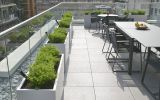 Individual steel trough planters add some green to a London terrace