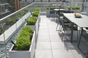 Bespoke Zintec Steel Planters At Investment Company London