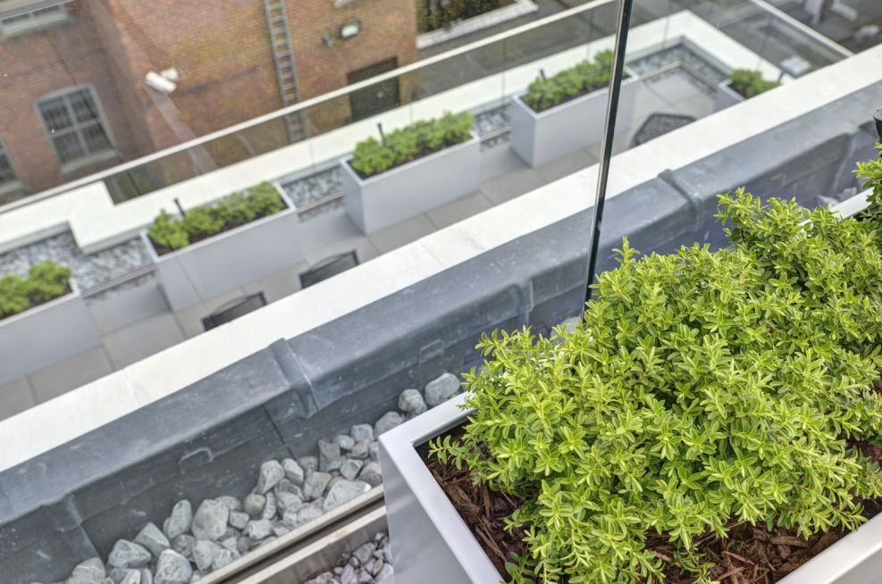White Aluminium Powder Coated Zintec Steel Planters On Lower Terrace