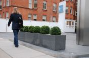 Granite Trough 1000 Street Planters At K West Hotel Entrance