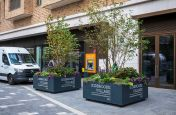Large tree planters for public realm