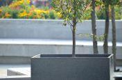 Mid-Grey Granite Stone Planters