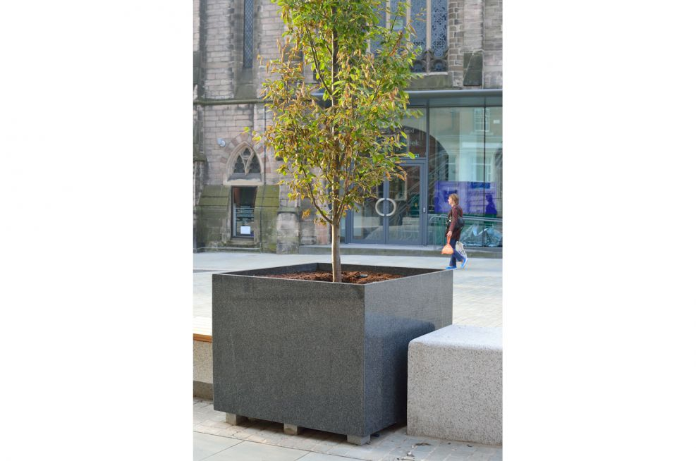 Tree Planters In A Square Section Style