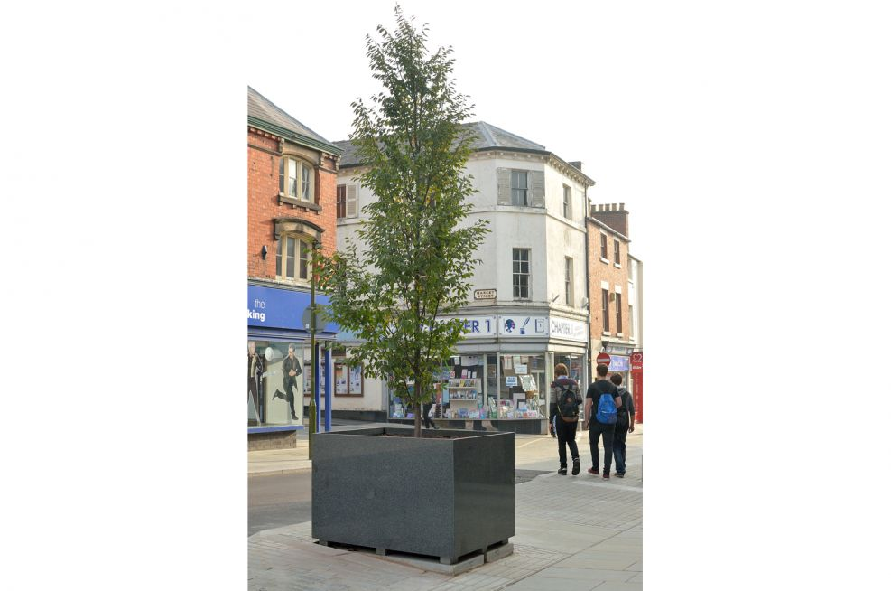 Tree Planters In Staffordshire