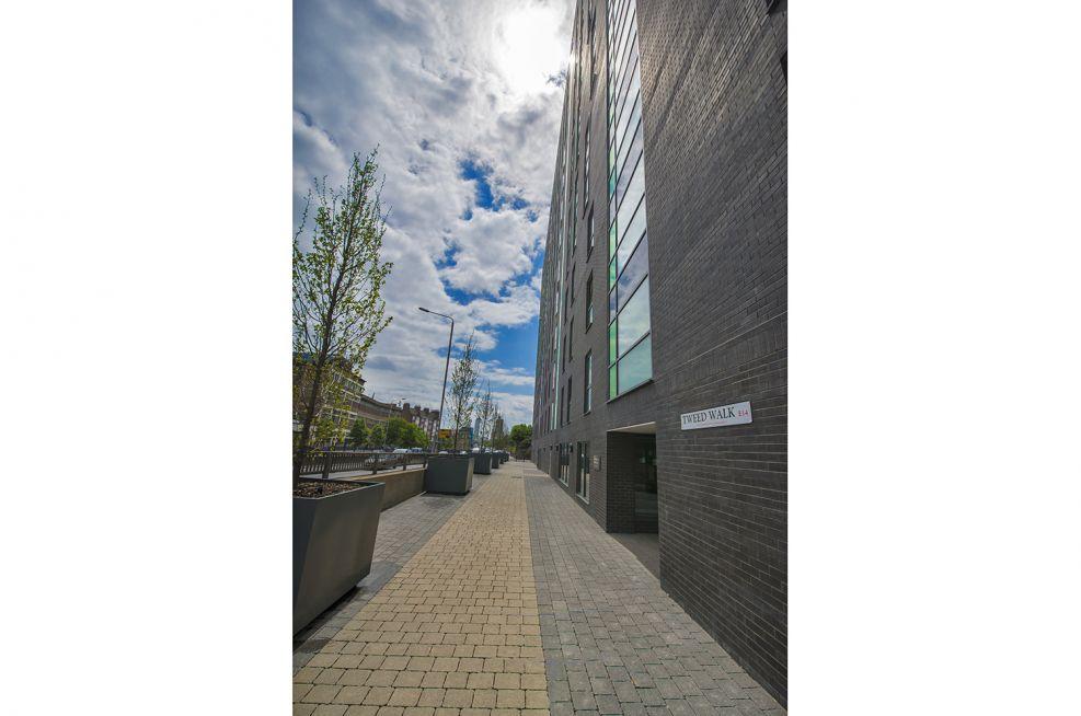Steel Tree Planters For Residential Buildings In London