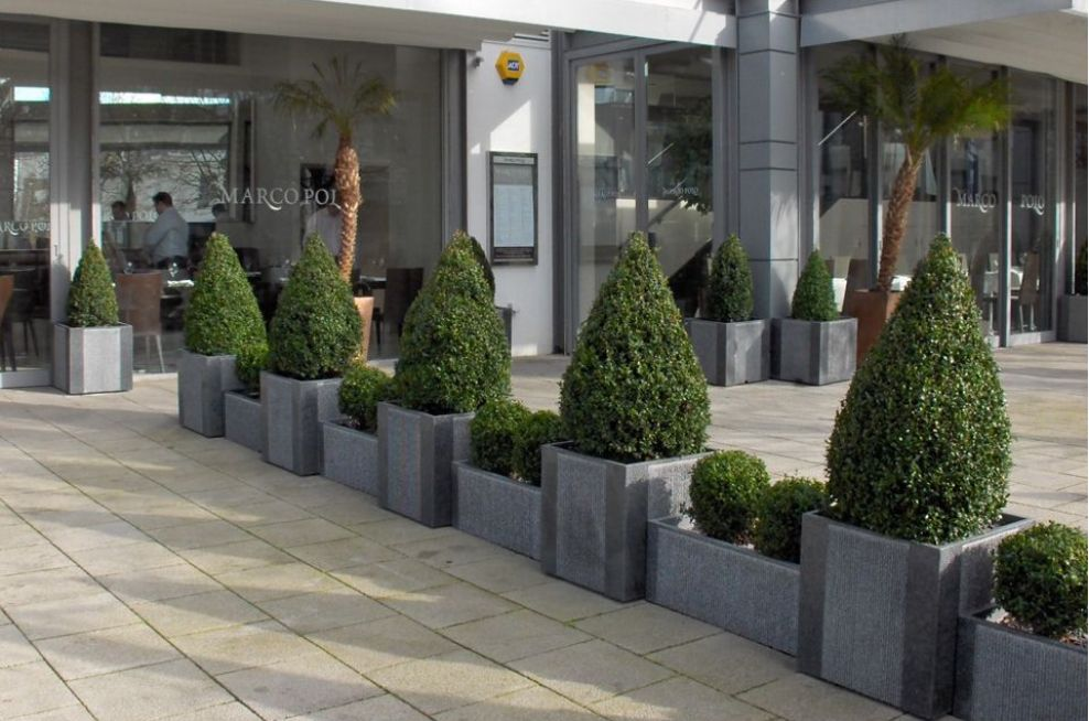 IOTA Stratos Granite Planters At Marco Polo Resteraunt