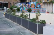Dividing Planters Used Alongside The Volleyball Court