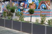Steel and Fibre Reinforced Cement Planters Marlborough Sports Garden