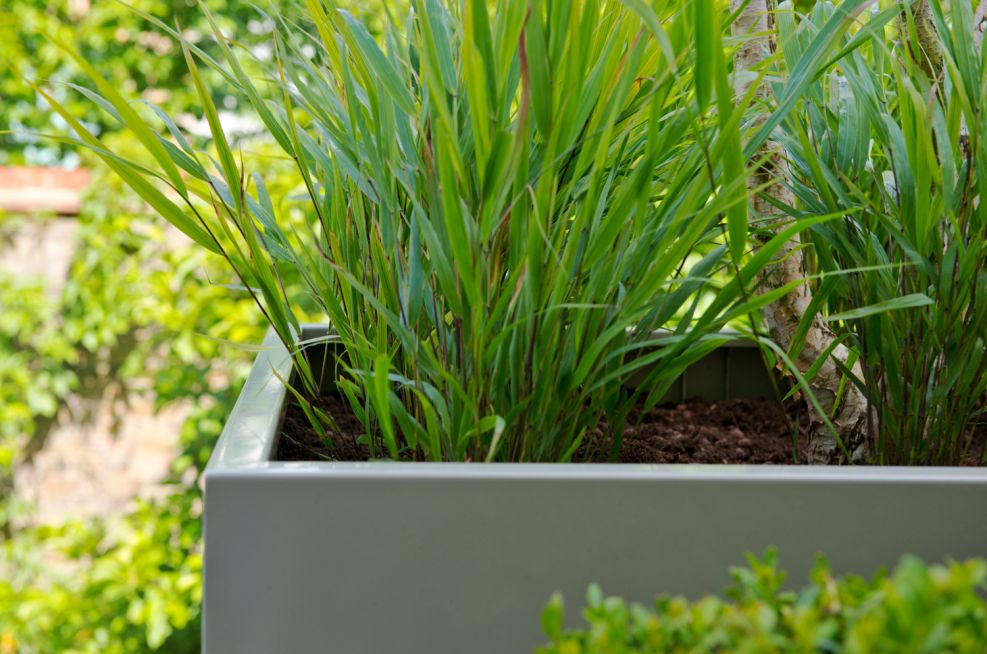 Pebble Grey Powder Coated planters