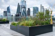 Roof terrace planters in London