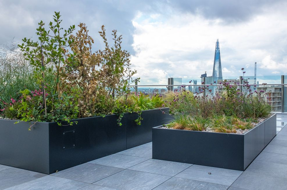 Rooftop planters for offices
