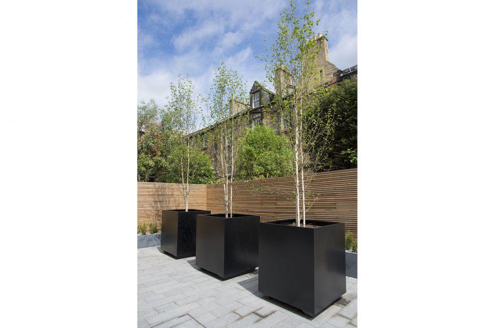 IOTA Street Tree Planters