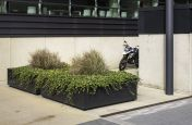 large steel shrub planters