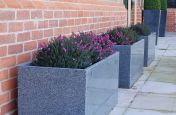 Granite Trough 1000 Planters Filled WIth Heather