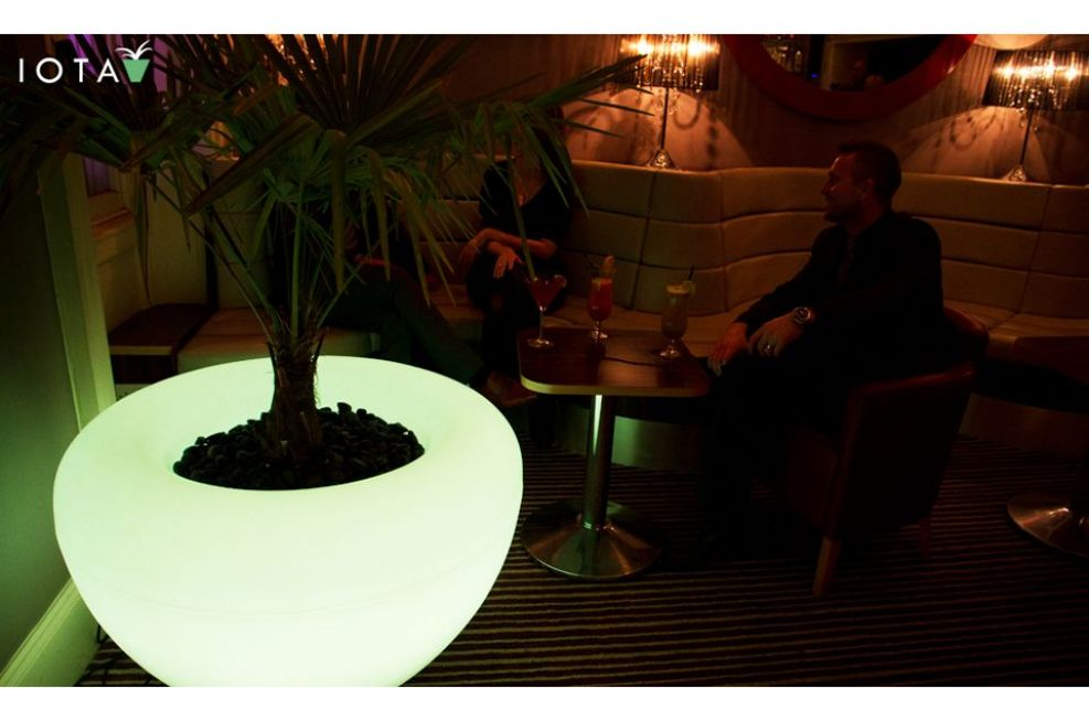 Illuminated Planters At Private Cocktail Bar And Venue, Bristol