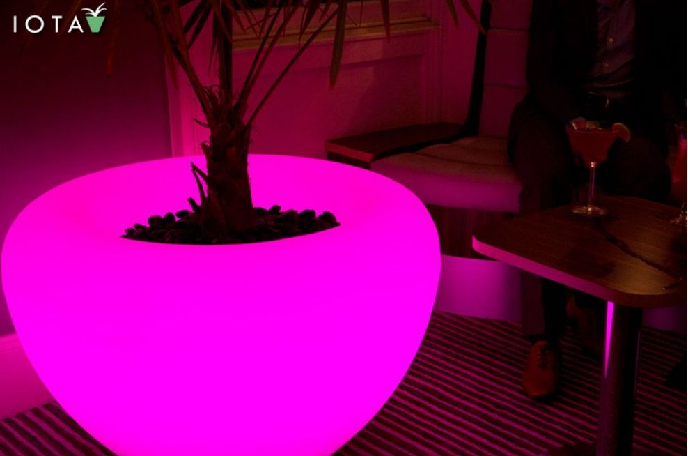 Illuminated SCOOP Moonlight Planter At Attix in Bristol