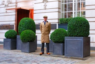 Lead Clad Steel Planters In Rosewood London