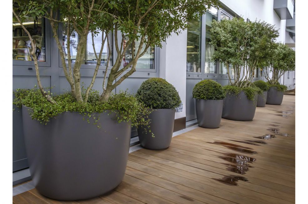 Composite Tree and Shrub Planters