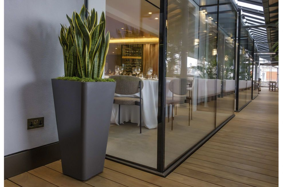 Composite Planters for Commercial Spaces