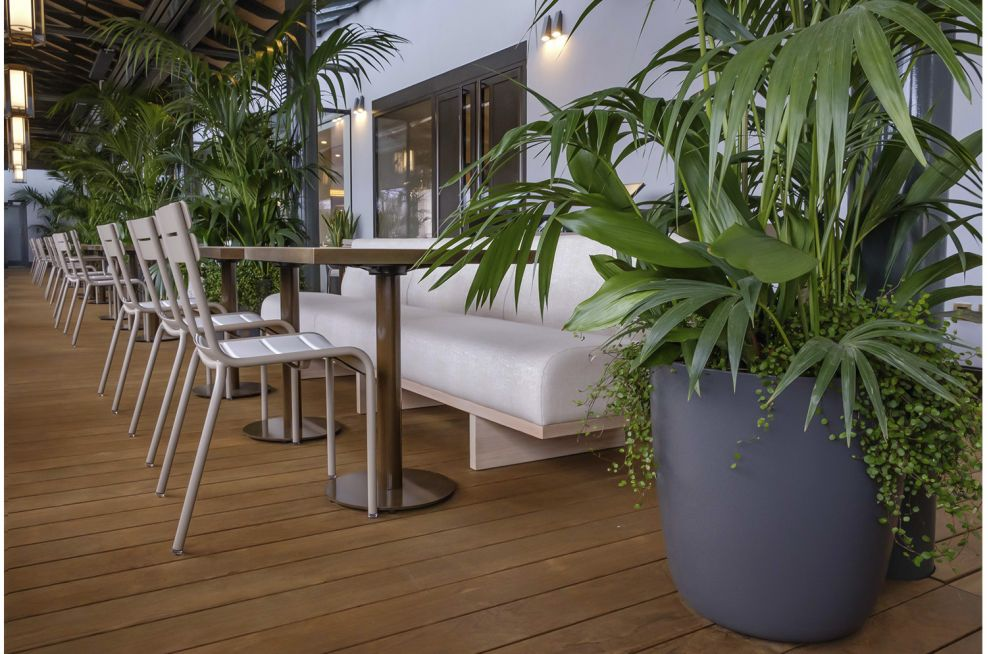 Commercial Plant Pots for Terrace