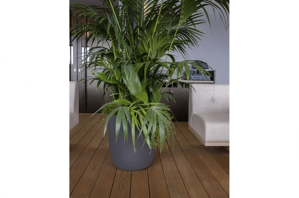 Tough Planters for Commercial Buildings