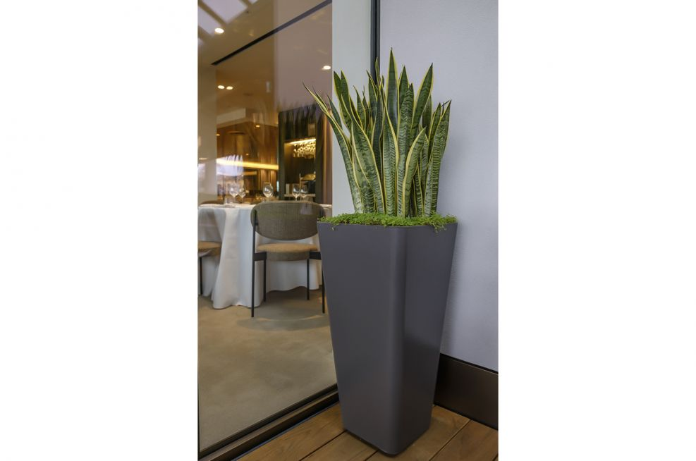 Commercial Planters for Corner Spaces